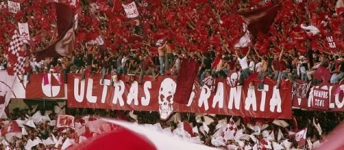 La nostra STORIA: Il Tifo ... - forumfree.it