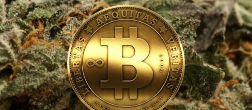 Bitcoin: a moeda que escapou do fork. ( Foto: Google)