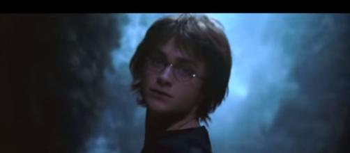 Harry Potter 20th Anniversary Symphony - Pteryx Video/YouTube