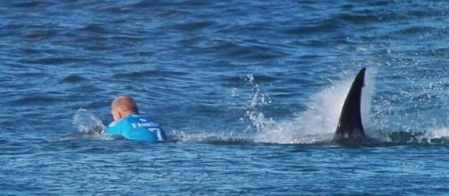 Mick Fanning stands tall among World Surf League rivals after ... - net.au
