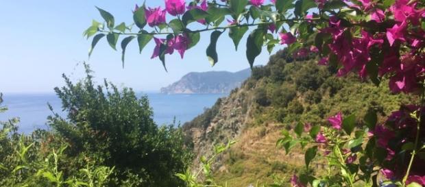 Il meraviglioso paesaggio di Corniglia
