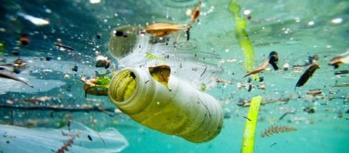La plastica sta ricoprendo il nostro pianeta.