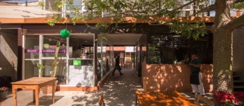 Mercado el Pochote Rayón – mercadopochoterayon.com