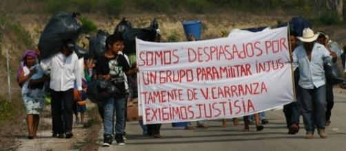 Miles de campesinos e indígenas mexicanos son desplazados violentamente de sus comunidades para apropiarse de sus tierras