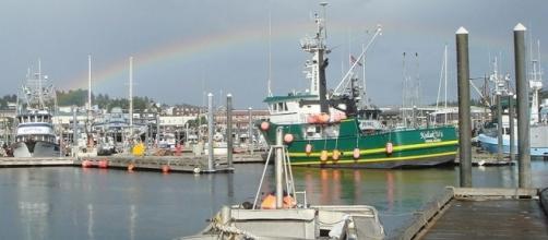 Kodiak Harbor, Alaska (credit – wikimediacommons)