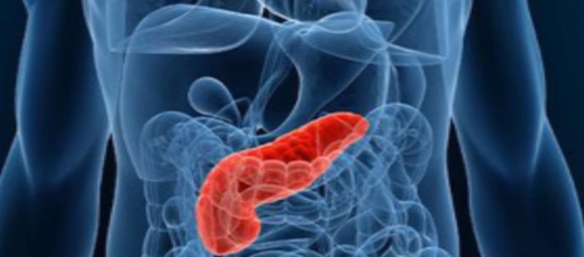 The top 9 risk factors that can cause pancreatic cancer