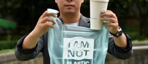 Se biodegrada en un máximo de 100 días - Fotografía periodicoelemprendedor.com