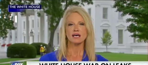 Kellyanne Conway on Fox News, via YouTube