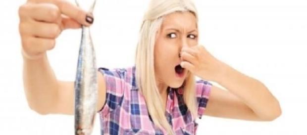 Métodos para evitar o mau cheiro (Foto: Google)