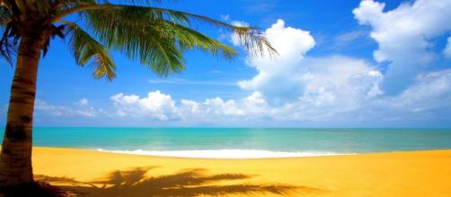 """Bachelor in Paradise"" image (Photo Credit: LostIslandWine via Flickr.com)"