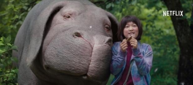 A screenshot of Okja/Photo via Netflix