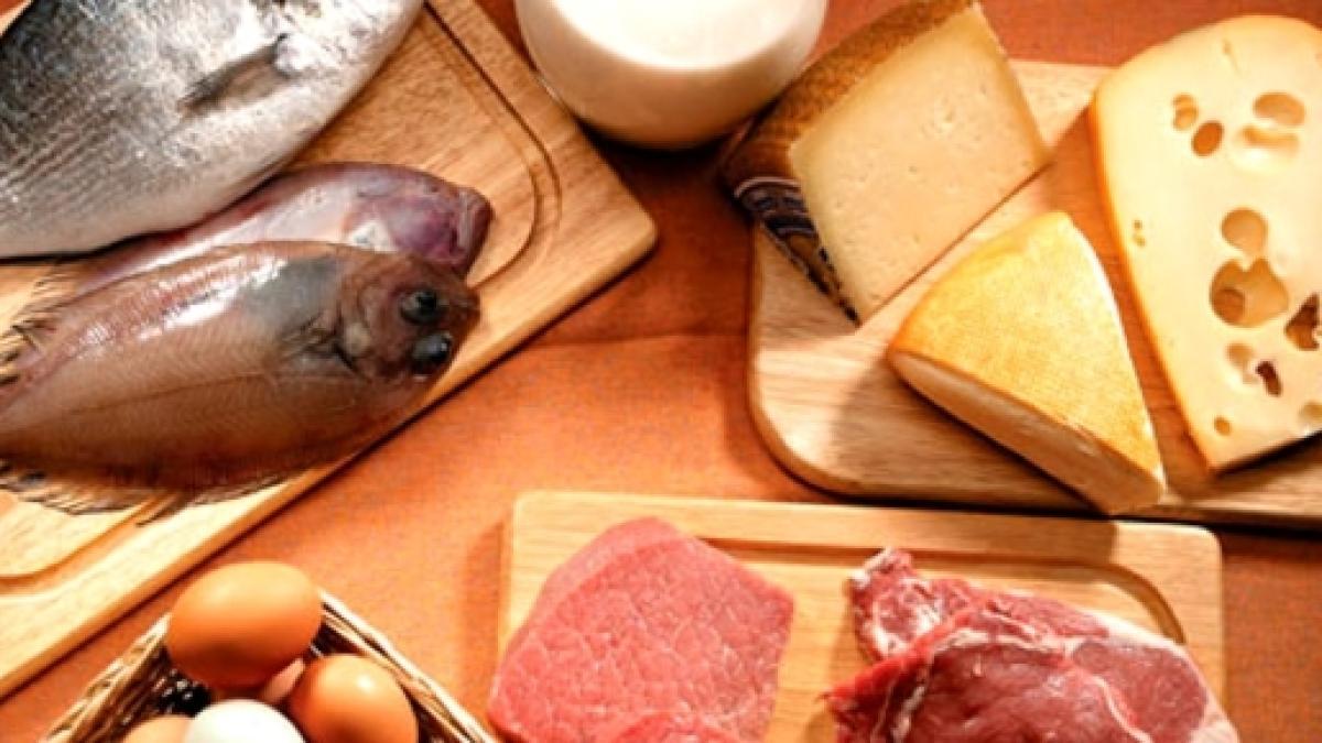 Por qué debemos consumir proteínas en la dieta diaria?