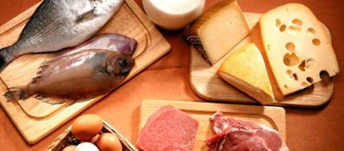 Es importante consumir proteínas en la dieta diaria - Contenido - com.mx