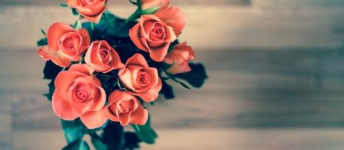 Free photo: Roses, Flowers, Bouquet, Love - Free Image on Pixabay ... - pixabay.com