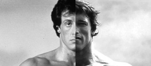 I own this picture. I created it for Sylvester Stallone FanPage