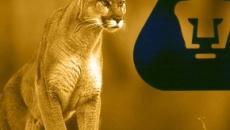 Pumas de la UNAM: Cosas que cambiaron mi vida
