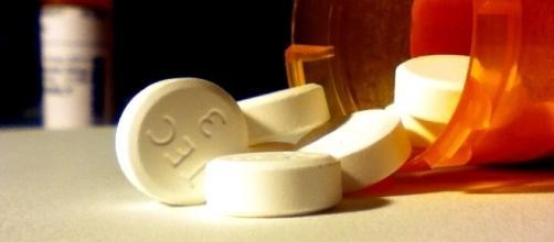 Nashville Mayor Megan Barry's son passed away due to a drug overdose/Photo via Brandon Giesbrecht, Flickr