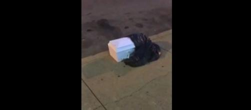 Photo casket found on Philadelphia street screen capture from YouTube/Skorch Flamez