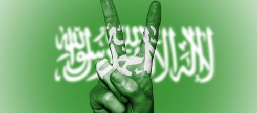 Saudi Arabia - peaceful or promoting terror? Image credit CCO Public Domain Pixabay