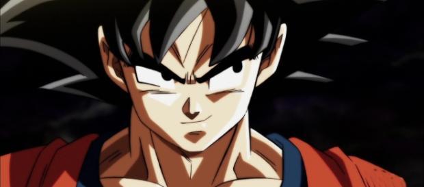 Imagen de Son Goku en el torneo