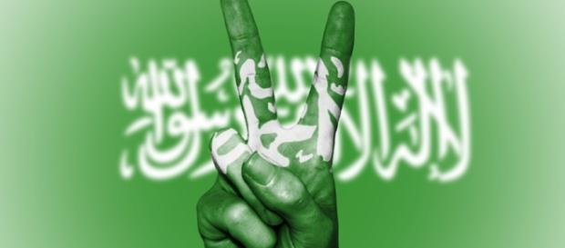 Saudi Arabia - peaceful or promoting terror? Image credit CCO Public Domain Pixabay