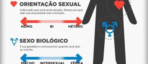 Ideologia de Gênero (Foto: Divulgação)