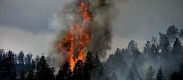 Fire in in Waldo Canyon, Colorado Springs June 2012 (wkimediacommons)