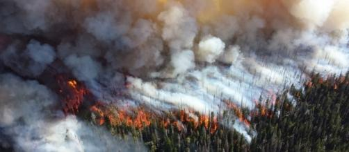 Wildfires during the summer can soon become uncontrollable. (Image credit NPS Climate Change Response / Flickr)