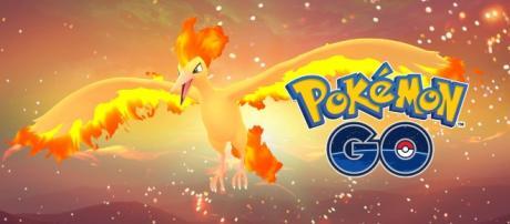 The Legendary Pokémon Moltres has been spotted in Pokémon GO! Facebook/Pokemon GO