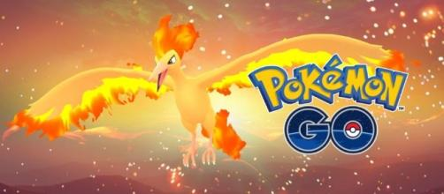 Another strong Legendary Moltres defeated, see what was done for the catch pixabay.com