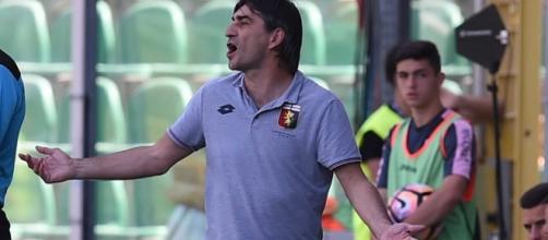 Calciomercato Genoa, Ranocchia più vicino per Juric