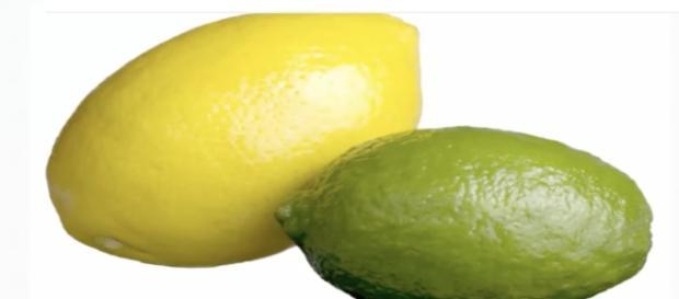 Lemons and Limes / Screenshot via YouTube