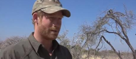 Prince Harry and Rhino Conservation Botswana - Rhino Conservation Botswana | YouTube
