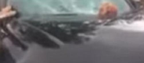Carro ficou todo destruído (Foto: Reprodução)