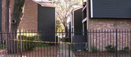 Newborn baby found in a Houston flowerbed, covered in ants [Image: YouTube: NBC4 WCMH-TV Columbus]