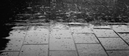 Rain - Free images on Pixabay - pixabay.com