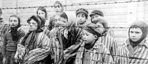 https://commons.wikimedia.org/wiki/File:Child_survivors_of_Auschwitz.jpeg