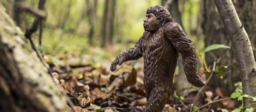 Representation of Bigfoot [Image: Pixabay/CC0]