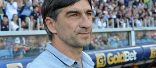 Calciomercato, il Genoa vuole Ansaldii