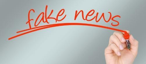 False. Fake. Image via Pixabay
