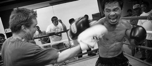 Freddie Roach and Manny Pacquiao/ photo by Roger Alcantara via Flickr