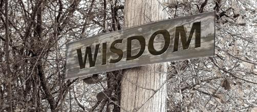 Free photo: Directory, Away, Wisdom, Education - Free Image on ... - pixabay.com