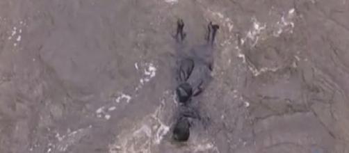 Una vita anticipazioni dal 28 agosto al 1 settembre: ritrovato il cadavere di Ursula?