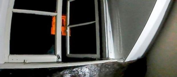 Câmera flagra momento em que janela abre sozinha (Mercury Press e Media Ltd)