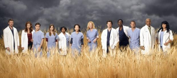 Grey's ANatomy doctors (Image Credit - Athena LeTrelle/Flickr)