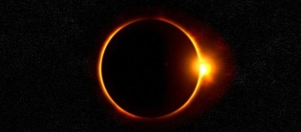 Zoo keepers were interested to see the effect of the total solar eclipse on animals [Image: Pixabay/CC0\