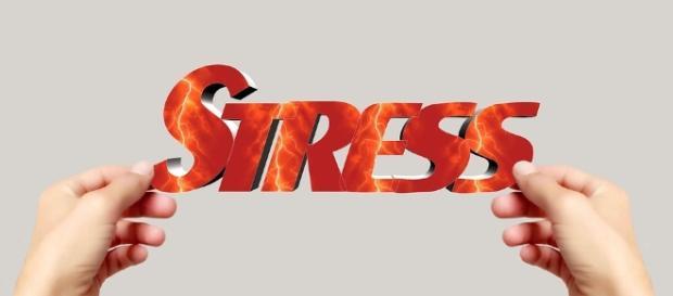 Free illustration: Hand, Keep, Font, Stress, Word - Free Image on ... - pixabay.com