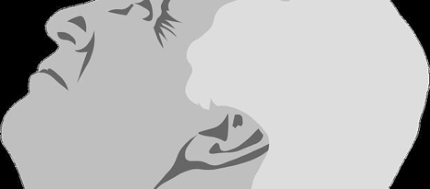 Donald Trump caracature. Pixabay.com