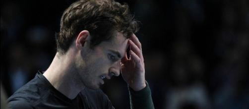 Andy Murray during the 2016 ATP World Tour Finals. Photo by Marianne Bevis, Flicr -- CC BY-ND 2.0