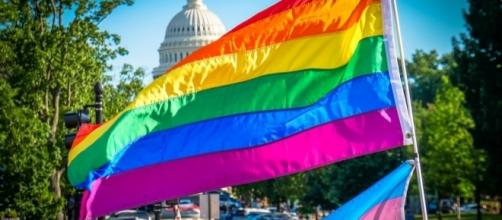 LGBTQ Rainbow flag in Washington D.C. / [Image by Ted Eytan via Flickr, CC BY-SA 2.0]